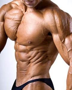 тренировка мышц исключая застой в бодибилдинге
