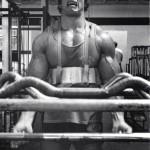 Arnold-Schwarzenegger 12