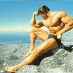 Arnold-Schwarzenegger 15