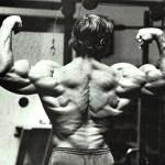 Arnold-Schwarzenegger 17