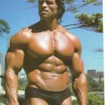 Arnold-Schwarzenegger 26