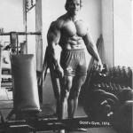 Arnold-Schwarzenegger 28