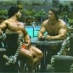 Arnold-Schwarzenegger 29