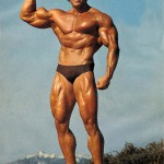 Arnold-Schwarzenegger 4