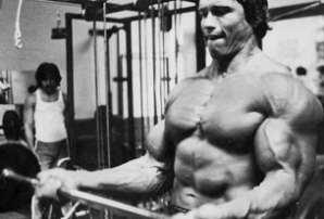 Арнольд Шварценеггер. Тренировка бицепса