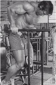 Арнольд Шварценеггер. Тренировка трицепса