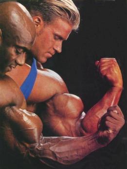 упражнения для накачки мышц рук